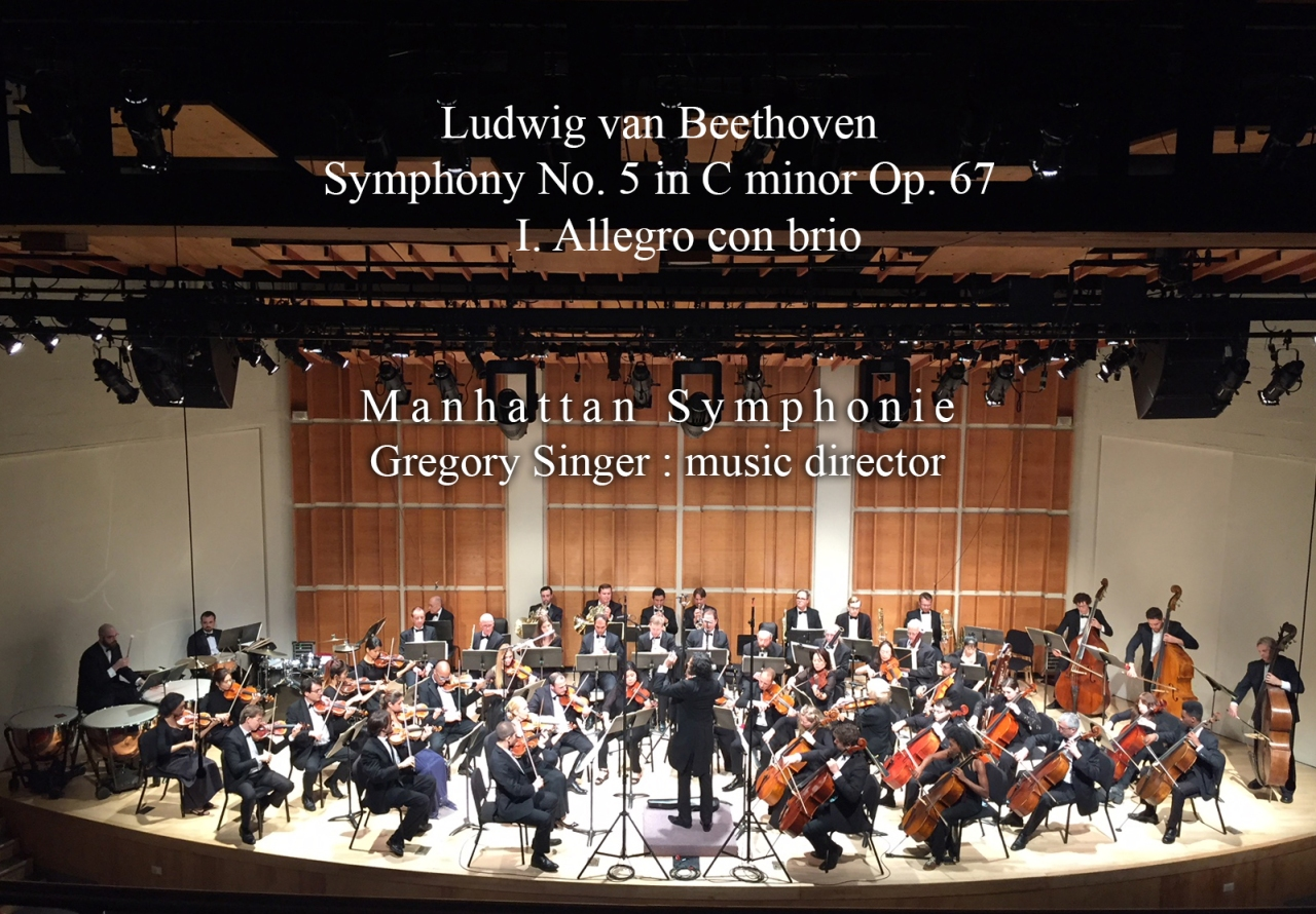 5Th Symphony beethoven 5th symphony – 1st movement video   gregory singer